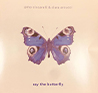 ciccarelli-butterfly_SMALL